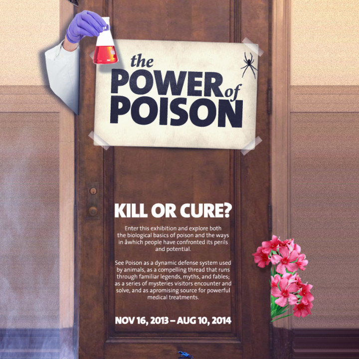AMERICAN MUSEUM OF NATURAL HISTORY : NEW YORK, NY : POWER OF POISON EXHIBIT