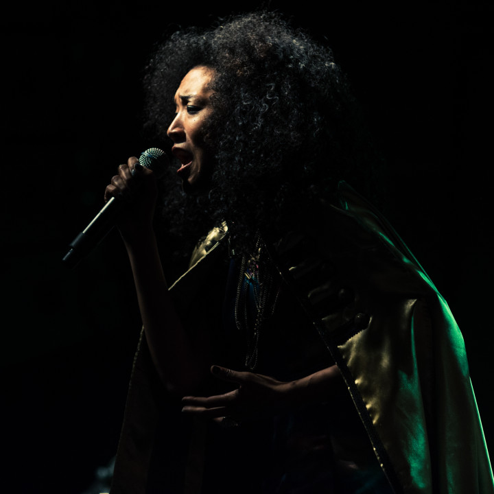 CONCERT PHOTOGRAPHY : JUDITH HILL : RISING STAR